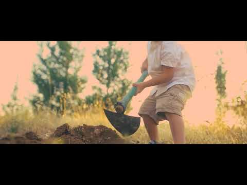 Israel Redemption. Bar/Bat Mitzvah   Orchard Vineyard Planting