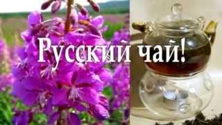 Малышева монастырский чай от гипертонии