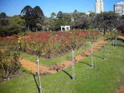 Jardin de rosas de el rosedal de palermo buenos aires for Amapola jardin de infantes palermo