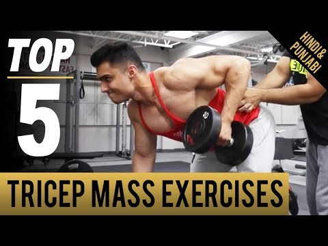 Exercise Program- BIG TRICEP MASS EXERCISES