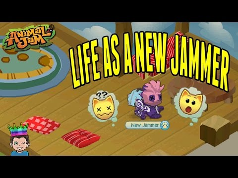 Life As A New Jammer - Animal Jam