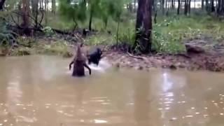 Приколы в лесу Приколы на охоте Подборка охотничьих приколов