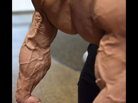 Borislav Iliev cleaning out beast mod