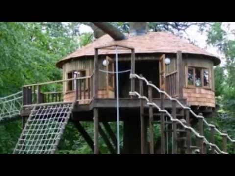 Strictly Come Dancing star Natasha Kaplinsky plans to build giant 26ft tall TREEHOUSE