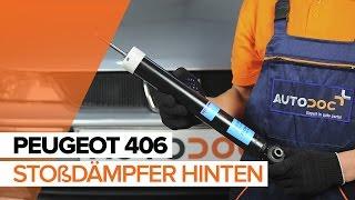 Wie Luftmengenmesser PEUGEOT 406 Break (8E/F) wechseln - Online-Video kostenlos