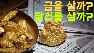 달러 투자 vs 금 투자,, 환율은 더 오를까? Dollar vs Gold