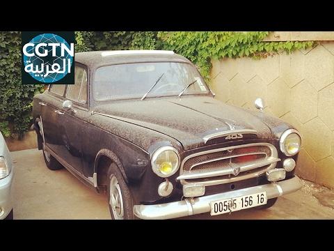 السيارات القديمة في الجزائر