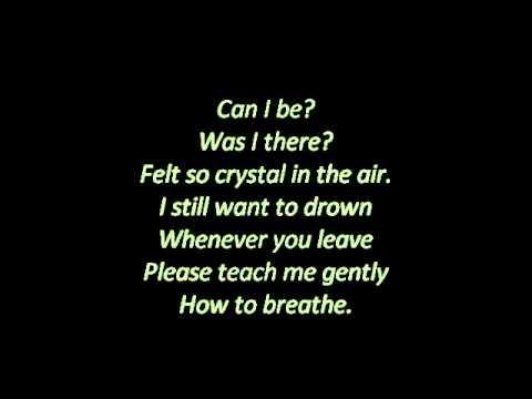Birdy Shelter Lyrics