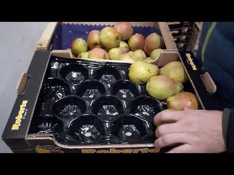Pera decana da SC Frutta Bagheria Palermo