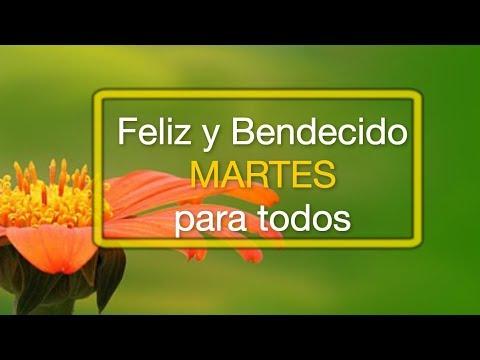 Feliz y Bendecido Martes Para Todos - Feliz Y Bendecido Martes -  Bonito Día pAra Tí