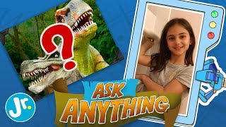 What Happened To The Dinosaurs? - Ask Anything