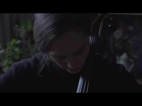 El cisne de Camille Saint Saens - Isidora O'Ryan (2)
