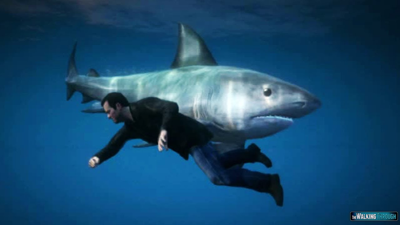 Gta 5 Gameplay How To Find The Shark Youtube
