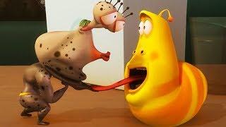 LARVA - FITNESS CLASS | Cartoon Movie | Cartoons For Children | Larva Cartoon | LARVA Official