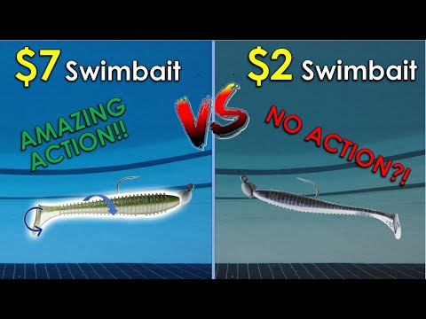 Testing Swimbaits In 13ft Olympic Pool | Eye-Opening Results