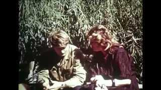 Однажды в Ростове: Новочеркасск 1962