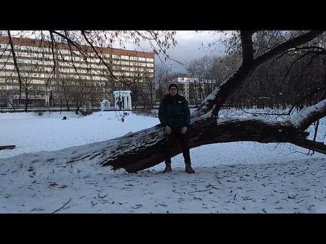 Изображение предпросмотра прочтения – «Уральский политехнический колледж -Межрегиональный центр компетенций» читают произведение «Дуб и трость» И.А.Крылова