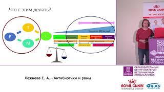 Лежнева Е. А. - Антибиотики и раны