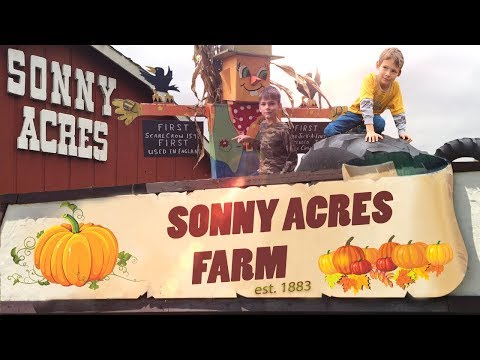 Sonny Acres Farm (West Chicago, IL)