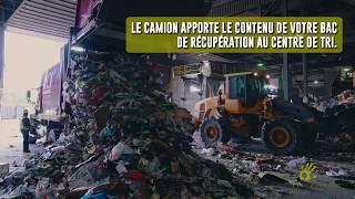 Lorsque vous déposez vos canettes au bac de récupération, sont-elles recyclées ?