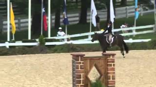 Video of GREYSTONE WILDCARD ridden by EVA ROMANOFF from ShowNet!