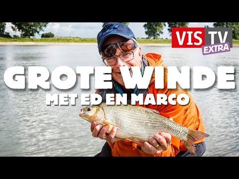 VisTV Extra #18 - Grote winde met Ed en Marco