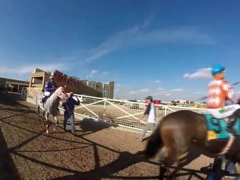 Zia Park Horse Racing - Hobbs, New Mexico | Casino