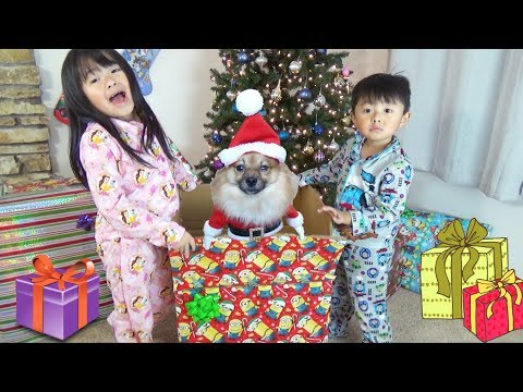 Christmas Morning 2017 Special-Opening Presents And Surprise Puppy From Santa