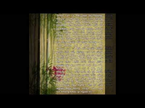 Nhạc Phật Giáo Không Lời Rất Hay (nhạc Thiền Tổng Hợp)
