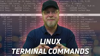 10 Linux Terminal Commands for Beginners