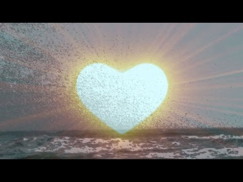 Heart Connection Meditation