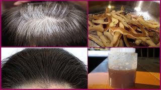 In 7 Days Change White Hair to Black Hair Naturally   Turn White Hair to Black Permanently