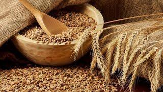 В Югорске стали больше производить сельскохозяйственных товаров(, 2018-02-07T06:48:11.000Z)