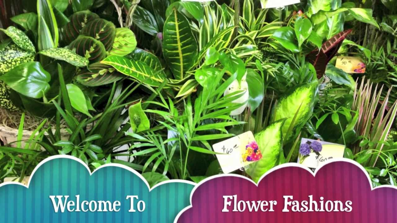 Flower fashions in frederick md florist flower delivery in flower fashions in frederick md florist flower delivery in frederick maryland dhlflorist Images