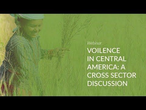 Webinar: Violence in