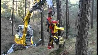Durchforstung - Thinning works with the Menzi Muck Harvester A71