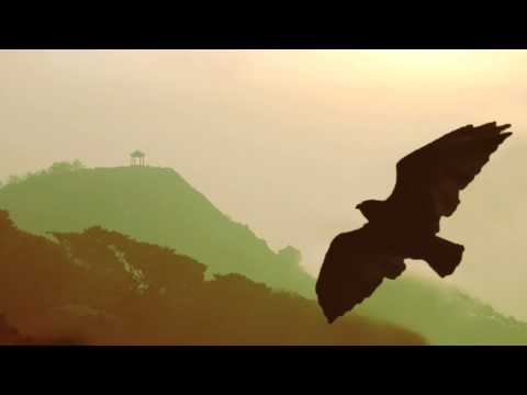 Relaxation Music // Instrumental Pan Flute 2 Hours - Flute de pan to relax