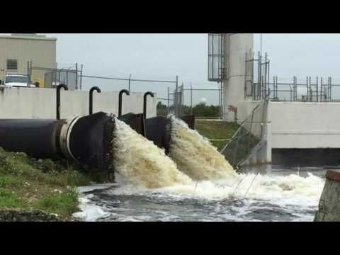 Florida Approves Higher Levels of Carcinogens In Water