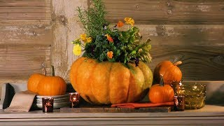 How To Make A Blooming Pumpkin | Southern Living