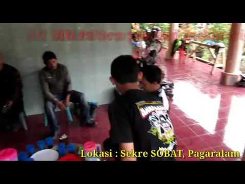 Scorpio Indonesia