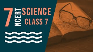 Class 7: Science (Chapter 11: Transportation in Animals and Plants)