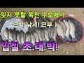 충북괴산 데이트코스 문광저수지 은행나무길