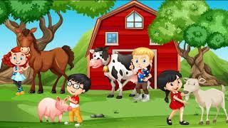 Zwierzęta na wsi część 2 (gdzie mieszkają, co jedzą, co nam dają, zadania)