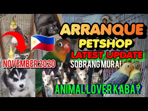 ARRANQUE MARKET MANILA PART2 | LATEST | SOBRANG MURA DITO!! November 20,2020