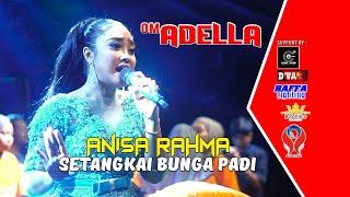 Download Lagu ANISA RAHMA - SETANGKAI BUNGA PADI [OM. ADELLA LIVE GUDO - JOMBANG] mp3