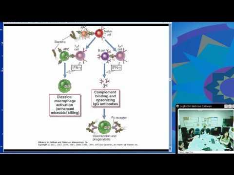 Effector Mechanisms of Cellular Immunity (Christina Ciaccio, MD)