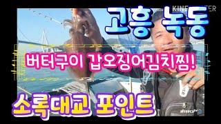 고흥 녹동 소록대교 갑오징어 잡아 버터구이 해묵기!