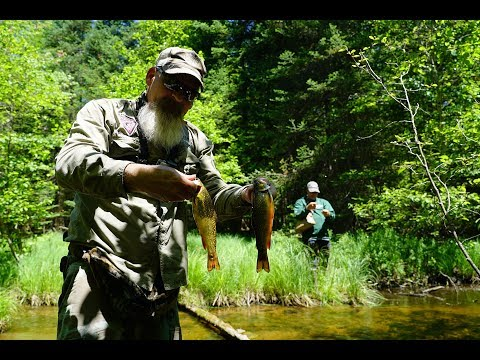 How to Catch Brook Trout (CATCH/COOK/CLEAN)