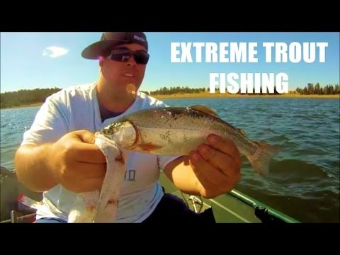 Fishing big lake arizona for rainbow trout part 1 youtube for Fishing report az