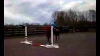 Missed This Zip Teaching lesson over ground poles